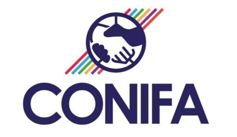 CONIFA dan Politik Pengakuan di Garis Tepi Sepakbola