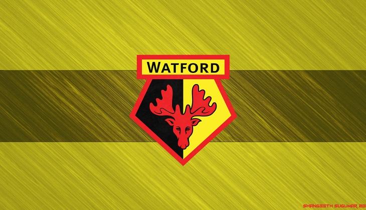 Terkena Kasus, Watford Terancam Pengurangan Poin