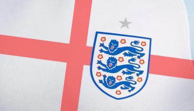 Alasan Kenapa Inggris Perlu Memanggil Defoe untuk Euro 2016
