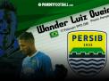 Membongkar Sosok Wander Luiz, Striker Baru Persib Asal Brasil